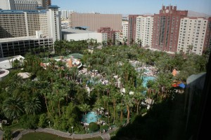 Flamingo_Pools_from_Room